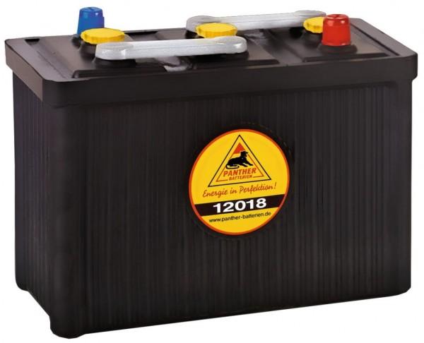 Panther Oldtimer 6V 120Ah 570A/EN DIN 12018 Starterbatterie